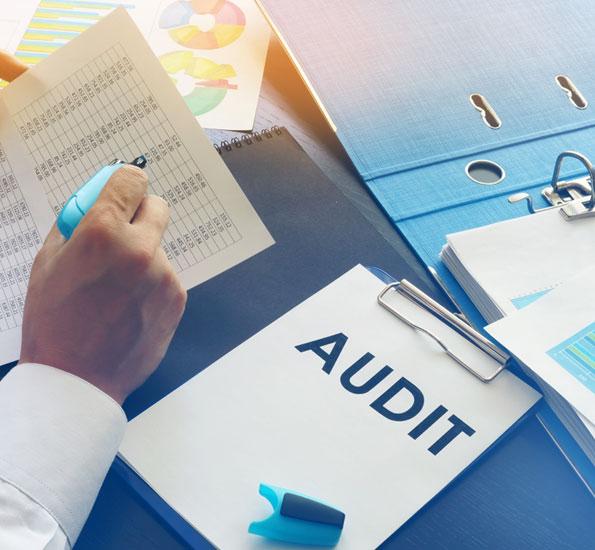 Return Audit